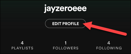 Click Edit Profile on Your Spotify Mobile App