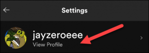 Click View Profile On Your Spotify Mobile App