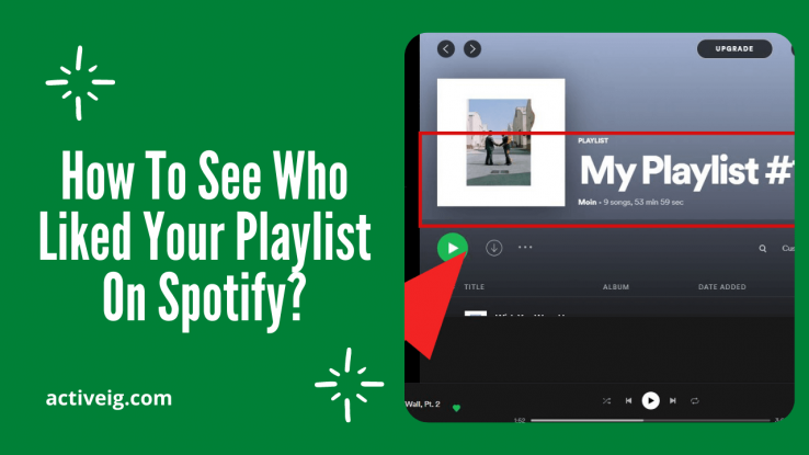 How To See Who Liked Your Playlist On Spotify?
