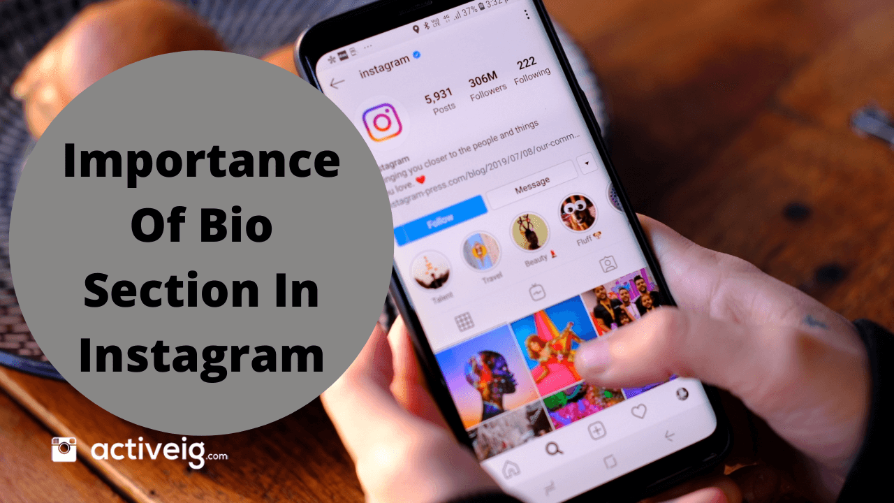 Importance of Bio Section In Instagram
